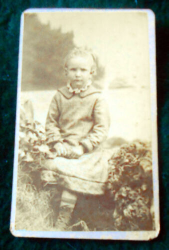 1880s CDV of Young Girl on Sitting on the Grass  ~