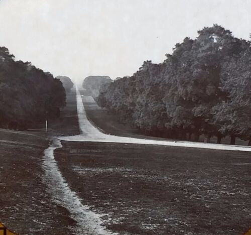 The Long Walk, Windsor Park, London, England, Magic Lantern Glass Slide