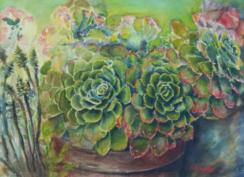 "Echeveria Succulent Green Archival Art Print Watercolor Painting ""Wild & Free"""
