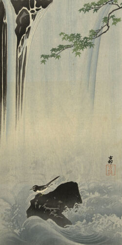 Japanese Bird at Waterfall by Ohara Koson Japanese Woodblock