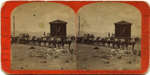 J.J. Reilly stereoview # 234(1870s) Humboldt Sulfur Mining Mule Team, California