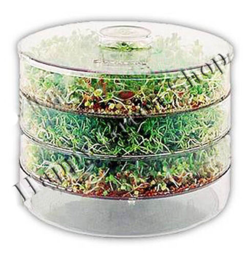 LARGE 3 TRAYS SPROUTER + sprouting seeds extra 3 packets! germinator seeds