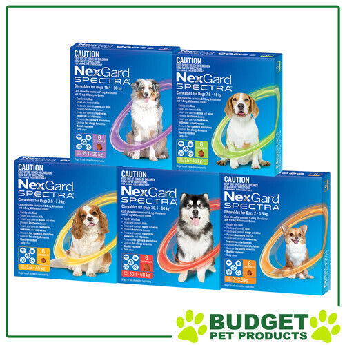 NexGard Spectra Flea, Ticks, Heartworm, Intestinal Worm For Dogs 6 Pack
