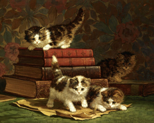 Four kittens playing books oil painting Canvas Giclee Art Print L2139
