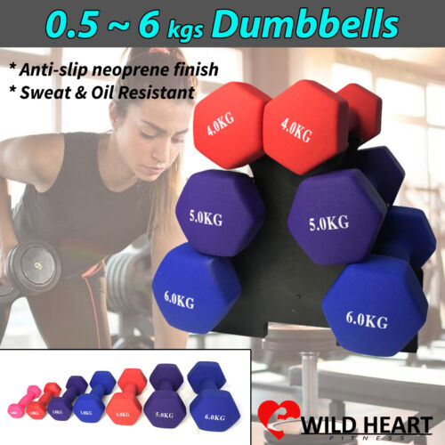 Dumbbell Weights Set Anti-slip Exercise Fitness Home Gym Dumbells