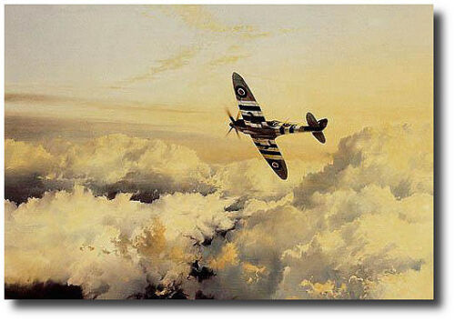 Wings of Glory by Robert Taylor - Spitfire - 4 Signatures