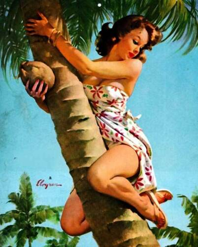 Retro Pinup Girl XL LARGE CANVAS PRINT A1 Vintage Poster Gil Elvgren Tree fruit