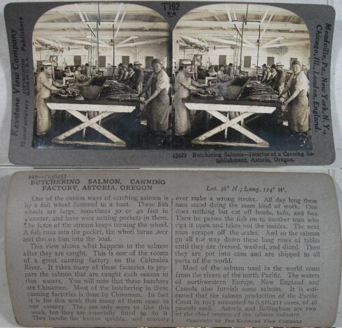1900's~Butchering Salmon & Canning Factory~Astoria, OR