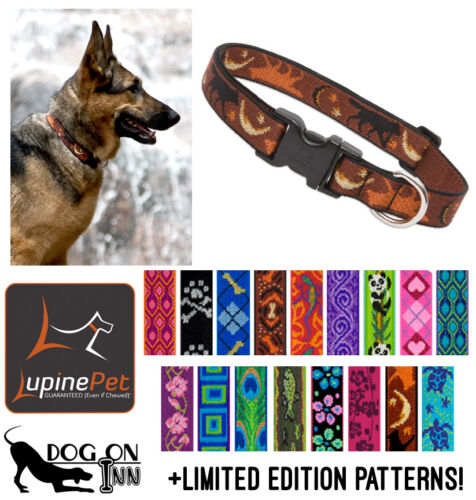 "Lupine Dog/Puppy Collar. 1"" wide, for med to XL dogs. Lifetime Guarantee!"