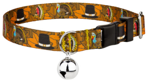 Country Brook Petz® Thanksgiving Tradition Featherweight Cat Collar