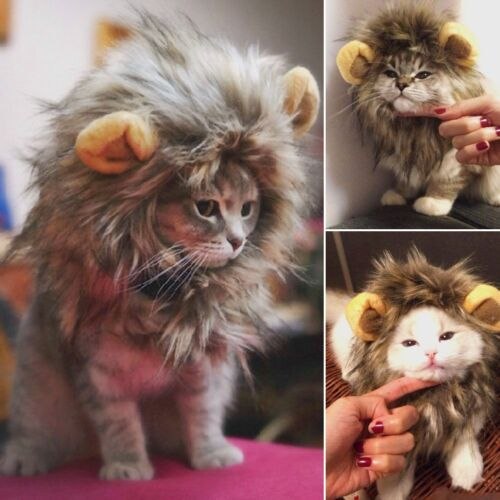 Pet Hat Costume Lion Mane Wig For Cat Pets Halloween Dress Up With Ears Hot HE