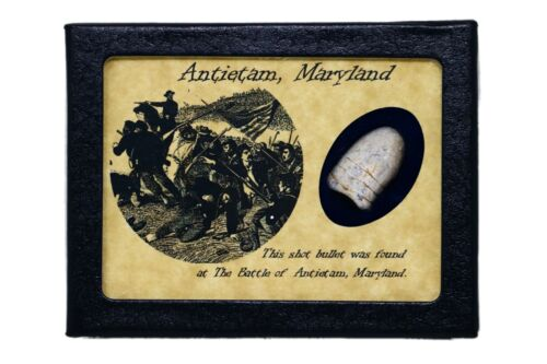 Civil War Bullet Relic from The Battle of Antietam, MD with Display Case and COABullets - 103996