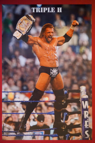 Triple H Wrestler WWE Champion Live Wrestling Picture Poster 24X36 New      TRIH