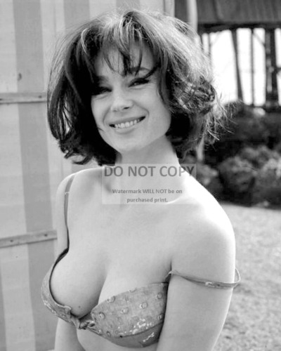 SHIRLEY ANNE FIELD ENGLISH ACTRESS PIN UP - 8X10 PUBLICITY PHOTO (CC662)
