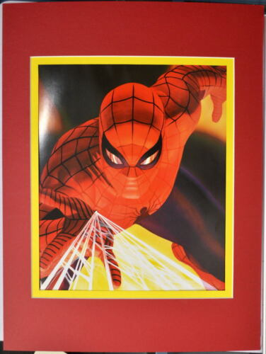 Amazing SPIDER-MAN PRINT PROFESSIONALLY MATTED Alex Ross art