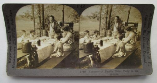 Summer Family Picnic Party in Woods Automobile Real Photo Keystone Stereoview