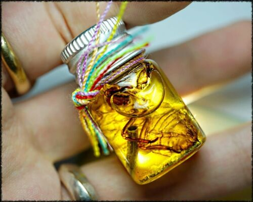 Charming Voice of Heaven Oil Phra Arjarn O Thai Amulet Attraction Love Charm