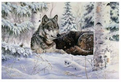 Mark Daehlin Heart And Soul   #183/200 ARTIST PROOF $500 Value MINT Wolves Wolf