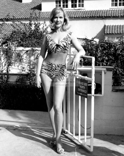 ACTRESS ANNE FRANCIS PIN UP - 8X10 PUBLICITY PHOTO (MW243)