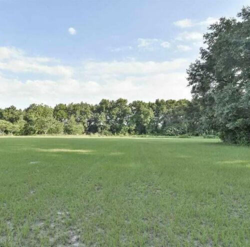 11+ Acres of Farm Land: 20 Miles From Gainesville, Florida! *$33,000 Evaluation* <br/> Cash Sale: NOT 4 DOWN PAYMENT! *High Bid Receives Deed*