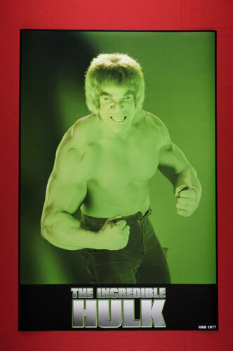 The Incredible Hulk Bruce Banner TV Series Collectible Poster 24X36 New   HLK2