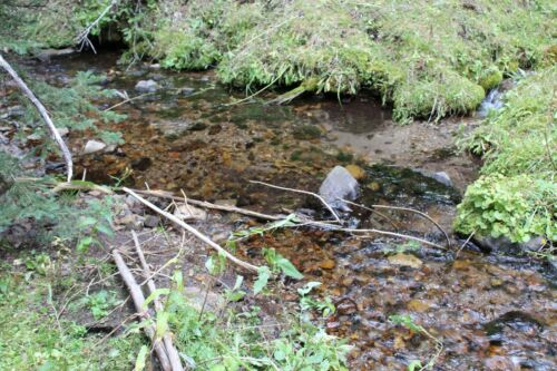 Montana Placer Gold Mine Mining Claim MT Creek Panning Sluice Gems French Creek <br/> 1281+ feet of creek to mine / 2WD road nearby Claim