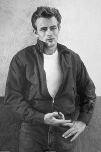 JAMES DEAN - PORTRAIT POSTER - 24x36 SHRINK WRAPPED - SEXY MOVIE STAR 36446