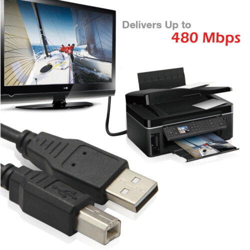 2M 6ft Hi-Speed USB 2.0 Type A Male to B Male Printer Cable New  AU seller