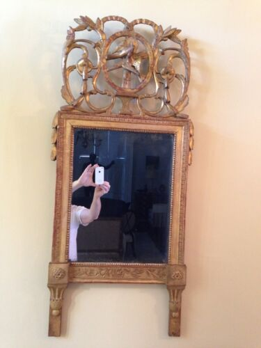 19th Century Mirror, CONTINENTAL, Neoclassic, gold gilt, carved love birds