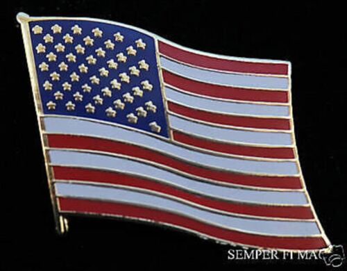 ORIGINAL USA FLAG WAVE VICTORY US GOLD PLATE JEWELRY LAPEL HAT PIN UP TIE TACKOther Militaria - 135