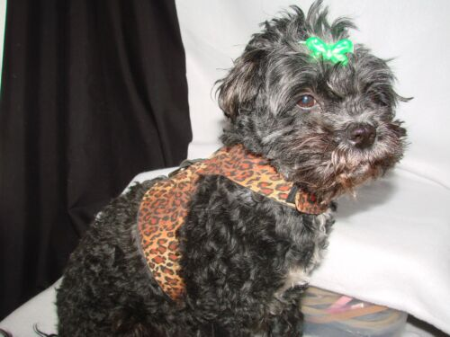Dog Harness,Vest Style Size MEDIUM Adorable,more colors & sizes in E-Bay store