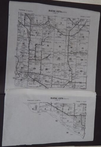 Wisconsin Richland County Map Buena Vista Township c.2010 2 maps Master