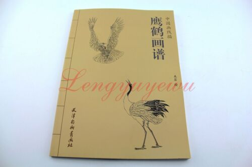 Chinese Ink Painting Hawk Eagle Red-Crowned Cran Outline Sketch Tattoo Book
