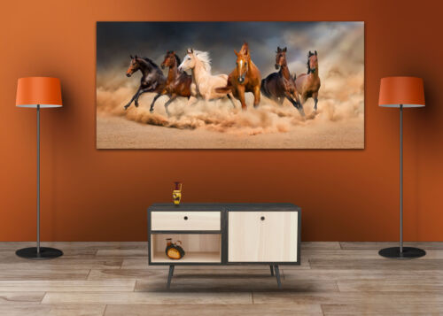 COLORFUL RUNNING HORSES  SCENERY WALL ARTS high quality Canvas home decor