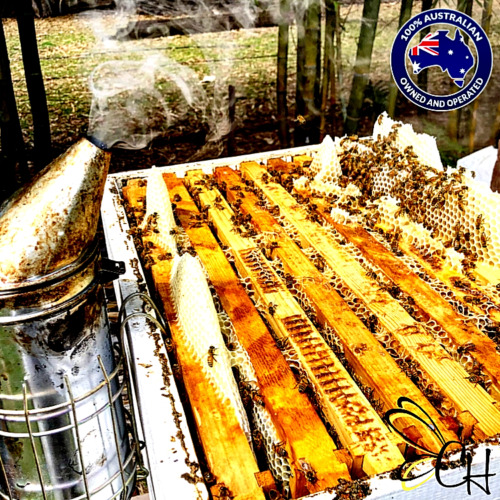 Australian Honey 100% Pure Raw Organic Straight from the Hive to you!