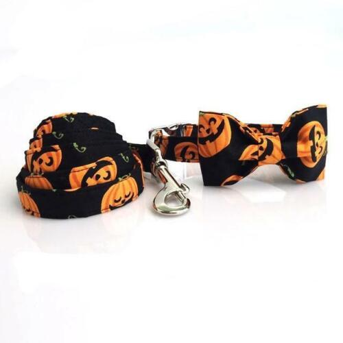 Halloween Pumpkins- Designer Collars & Leads for Dogs & Cats