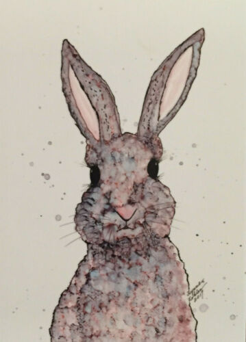 Aceo  art PRINT Jack Rabbit by Lynne Kohler 2.5x3.5""