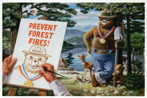 Smokey Bear With Gold Medal Only You Can Prevent Wildfires, Ad - Modern Postcard