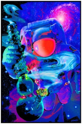 Have A Nice Trip Blacklight Poster 23 x 35