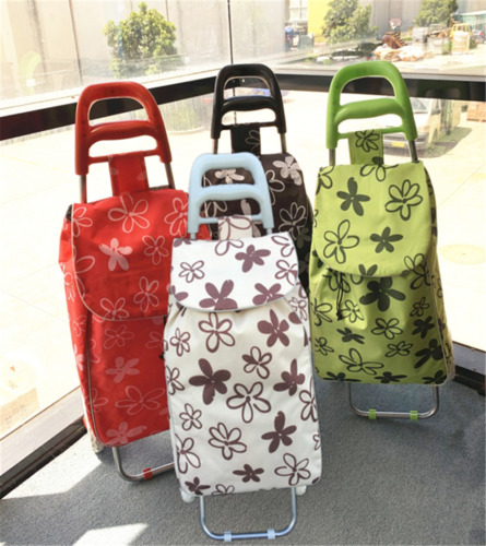 Shopping Carts Two Wheels Trolley Bag Vibrant Colored Nylon Luggage dc2163