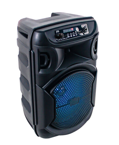 Portable Party Speaker Rechargeable Wireless Bluetooth Mic LED Lights FM USB <br/> 15% OFF Use Code PAPR15 Expires 26 April