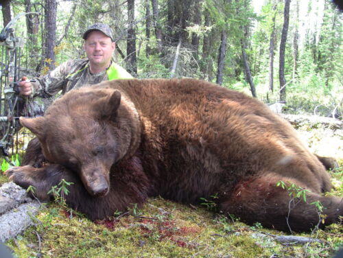 FULLY GUIDED BEAR HUNTHunting Trips & Leases - 14110