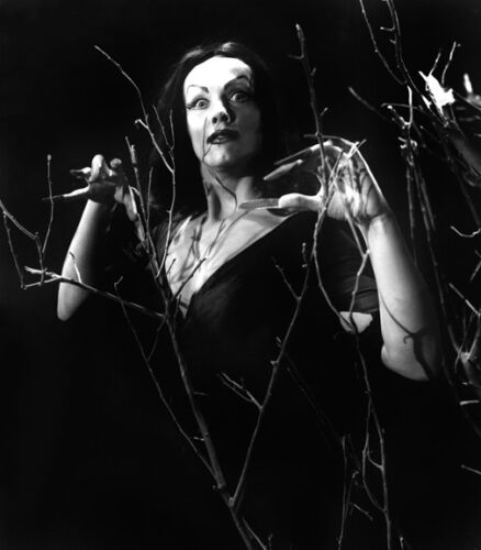 """Plan 9 from Outer Space Vampira 14 x 11"""" Photo Print"""