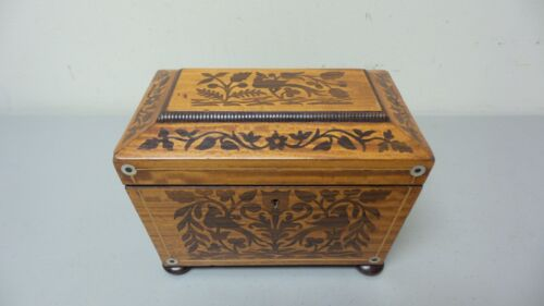 BEAUTIFUL 19th CENTURY ANTIQUE ENGLISH INLAID TEA CADDY BOX, UNUSUAL WOOD