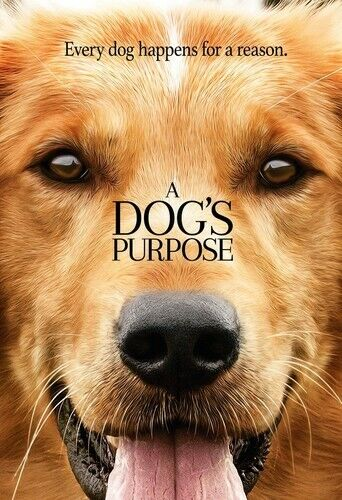 Dog's Purpose (2017, DVD NEW)