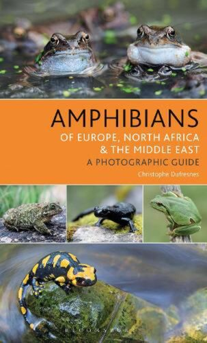 Amphibians of Europe, North Africa and the Middle East: A Photographic Guide by
