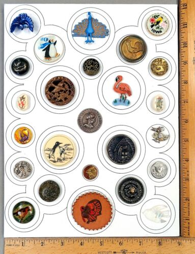 Card of 25 ANTIQUE BUTTONS, Assorted BIRDS, Various Materials / Ages