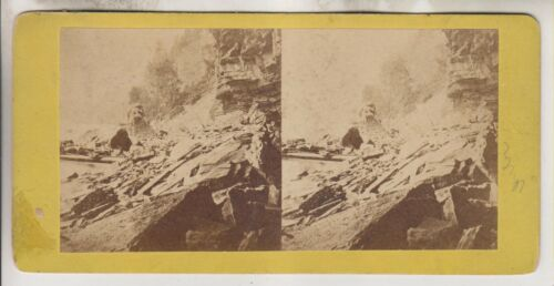 VINTAGE STEREOVIEW - THE BANKS OF THE NIAGARA RIVER