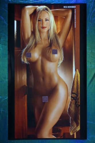 2003 Playboy Magazine Playmate Rare Divini Rae Promo Poster 21X36 OOP New   03DR