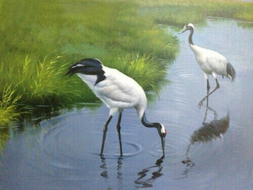 CHENPAT909 hand painted two white cranes on Wetland oil painting wall art canvas